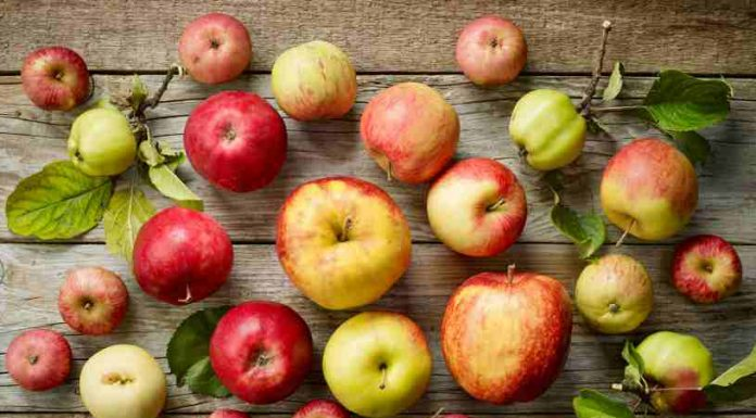 Manzana Salud - Bienestar y Salud con Manzanas
