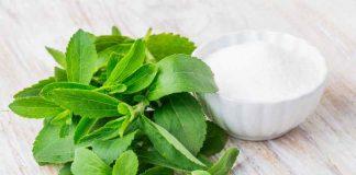 Stevia la Planta Prohibida - Stevia la Planta Milagrosa