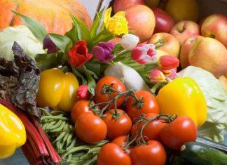 Dieta Vegetariana para la Salud - Dieta Vegetariana