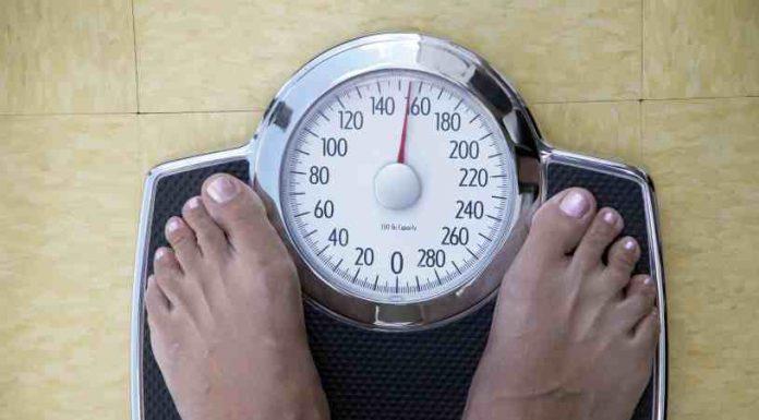 Dieta Pronokal - Dieta Pronokal para mejorar la Salud