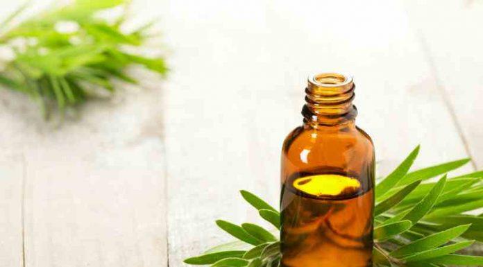 Aceite Esencial de Gomenol - Aceite Gomenol