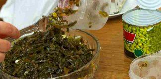 Alga Chlorella - Adelgaza con el Alga Chlorella
