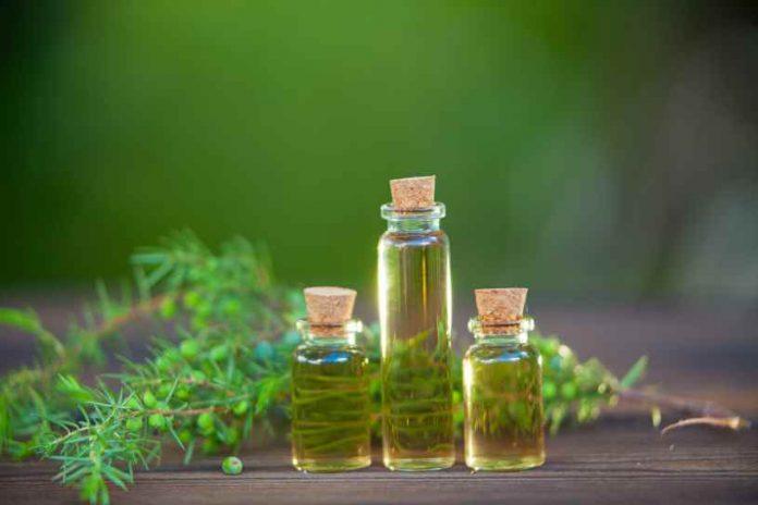 Aceite Esencial de Enebro - Beneficios del Aceite Esencial de Enebro