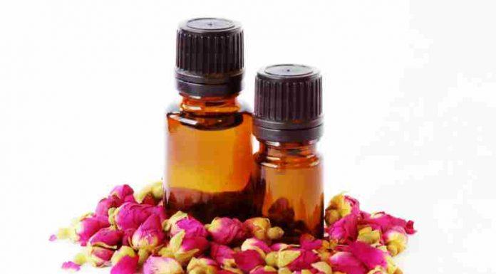 Rosa de Mosqueta - Beneficios de la Rosa de Mosqueta