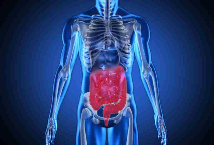 Enfermedades Aparato Digestivo - Aparato Digestivo Enfermedades