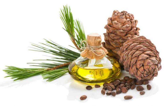 Aceite de Cedro - Beneficios del Aceite de Cedro