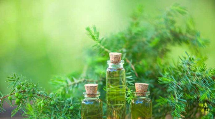 Aceite Esencial de Abeto - Beneficios del Aceite Esencial de Abeto
