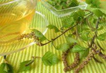 Aceite Esencial de Abedul - Beneficios del Aceite Esencial de Abedul