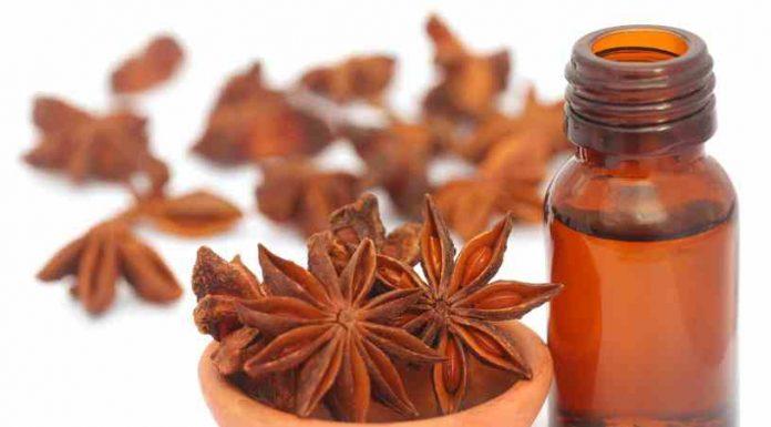 Aceite Esencial de Anís Verde - Beneficios del Aceite Esencial de Anís Verde