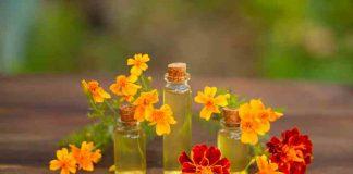 Aceite Esencial de Árnica - Beneficios del Aceite Esencial de Árnica
