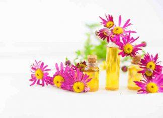 Aceite Esencial de Caléndula - Beneficios del Aceite Esencial de Caléndula