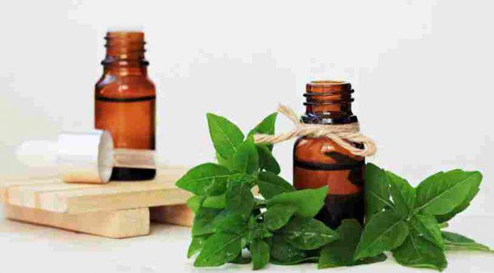 Aceite de Albahaca - Beneficios del Aceite de Albahaca