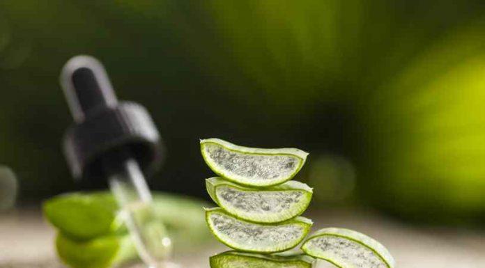 Beneficios del Aloe Vera - Propiedades del Aloe Vera