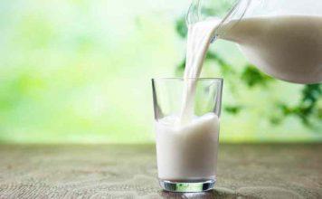 Leche para Dieta - Elegir la leche para Dieta