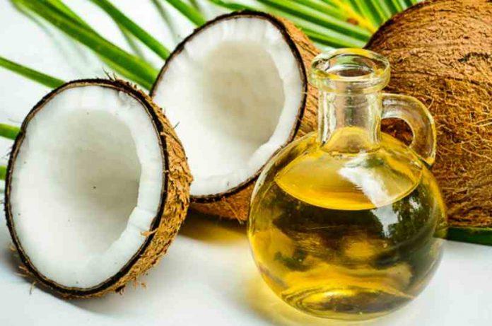 Aceite de Coco de Palma Chilena - Beneficios del Aceite de Coco de Palma Chilena
