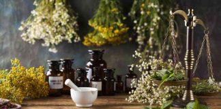 Historia de la Aromaterapia - Historia Aceites Esenciales