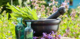 Yoga y Aromaterapia - Aromaterapia unida al Yoga