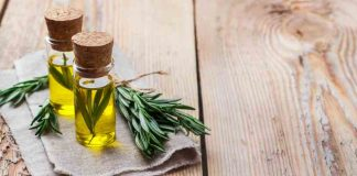 Aceite de Romero - Beneficios del Aceite de Romero