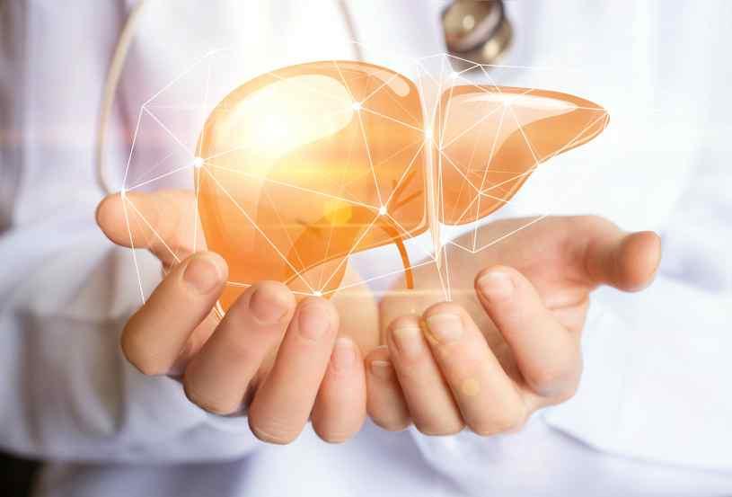 Enfermedades del Hígado - Aumento Enfermedades del Hígado