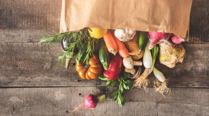 Claves Nutrición Vegetal - ¿Cuales son las Claves de la nutrición vegetal?