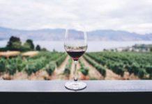 Guardar el Vino - ¿Cómo Tenemos que Guardar el Vino?