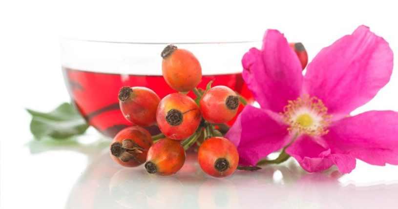 Dulce de Rosa de Mosqueta - ¿Qué es el Dulce de Rosa de Mosqueta?