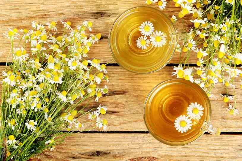 Manzanilla - Hierbas Medicinales