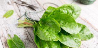 Beneficios de la Acedera en los Trastornos digestivos