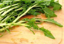 Beneficios de la Achicoria para mejorar la Digestión