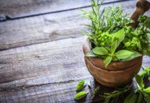 Hierbas para el Alivio Natural del Dolor