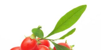 Beneficios para la salud de las Bayas de Goji