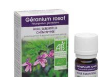 Beneficios del Aceite Esencial de Rosa Geranio
