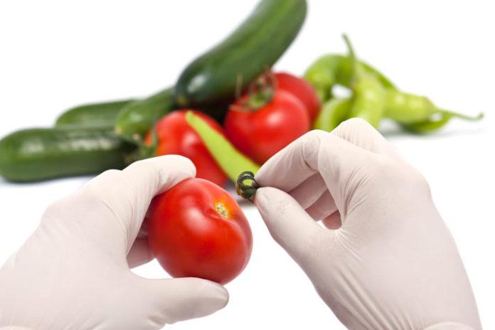 Pequeñas Directrices para una Seguridad Alimentaria