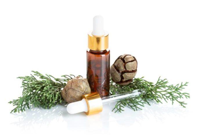 Beneficios del Aceite Esencial de Ciprés
