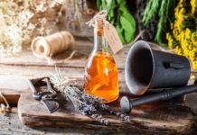 Plantas Medicinales que Ayudan al Cerebro y a la Memoria