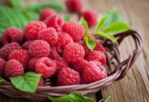 Beneficios de la Frambuesa - Propiedades de la Frambuesa