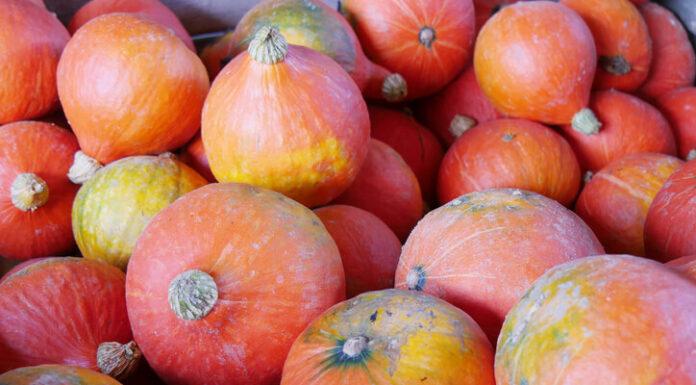 Frutas y Verduras para el Mes de Noviembre