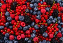 Propiedades y Beneficios de los Frutos Rojos