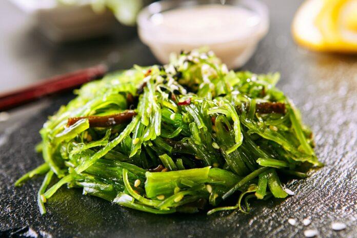 Propiedades de las Algas - Beneficios de las Algas