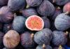 Frutas y Verduras en Septiembre