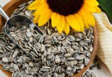 Propiedades Semillas de Girasol - Beneficios Semillas de Girasol