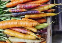 Virtudes de las Zanahorias - Beneficios de las Zanahorias
