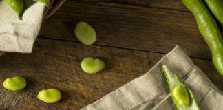 Propiedades de los Frijoles - Beneficios de los Frijoles