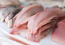 Comer Pescado con Regularidad