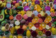 Alimentos Ricos en Polifenoles