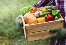 Alimentos Incluir en el Menú para Adelgazar Rápidamente