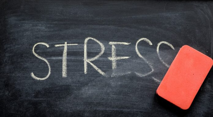 Subir o Bajar de Peso en Momentos de Estrés