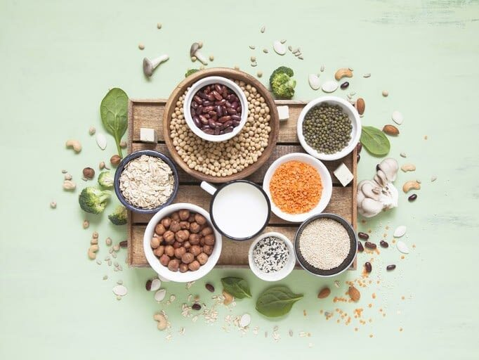 La Importancia de la Proteína Vegetal
